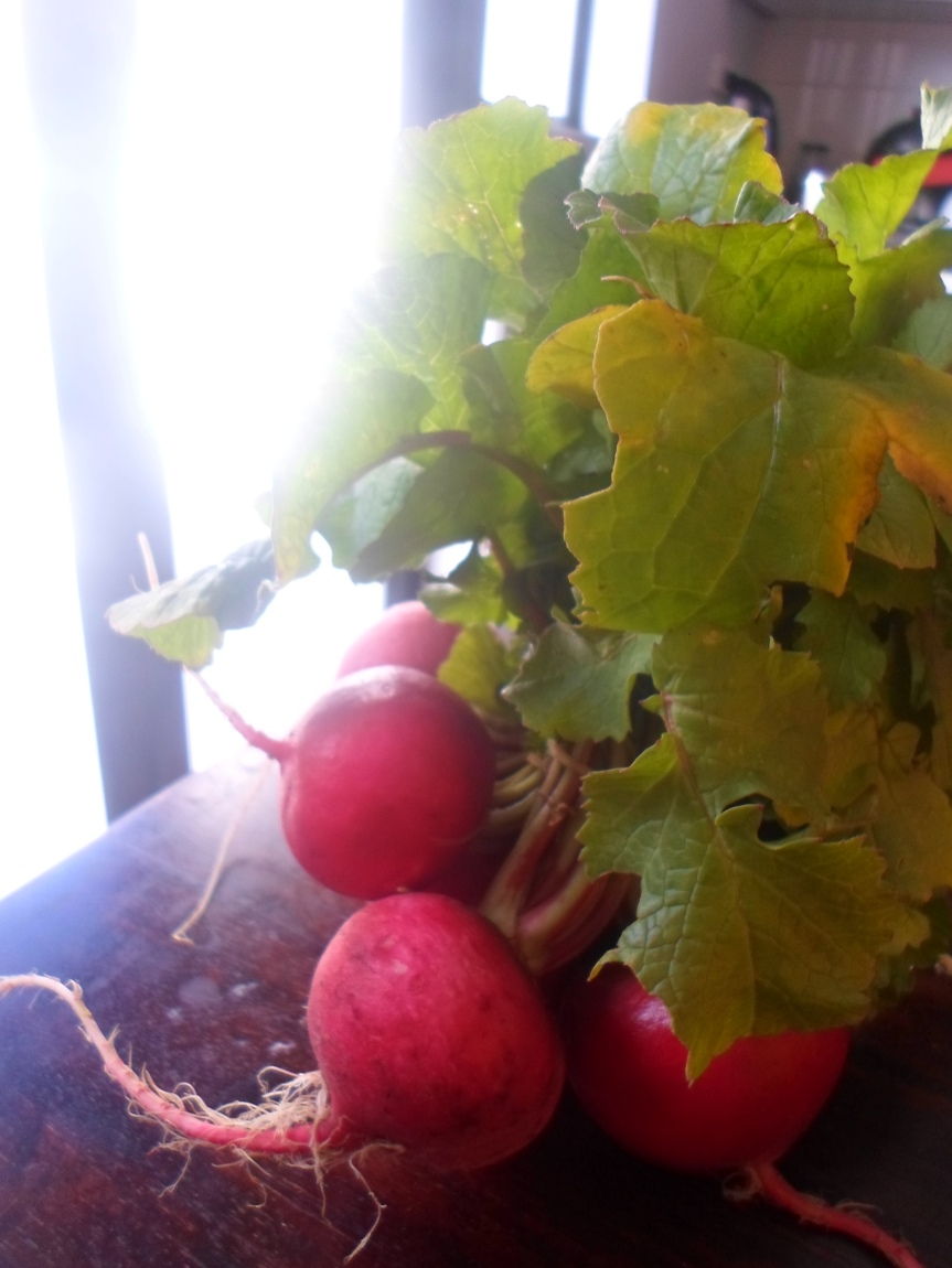 red roasted radishes
